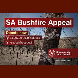 bushfire appeal image